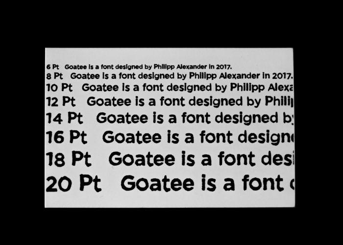 Goatee (4)